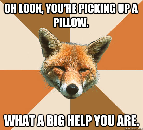 oh look youre picking up a pillow what a big help you are - Condescending Fox