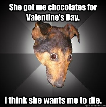 she got me chocolates for valentines day i think she wants - Depression Dog