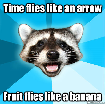 time flies like an arrow fruit flies like a banana - Lame Pun Coon
