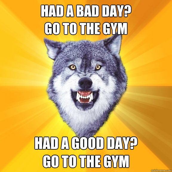 had a bad day go to the gym had a good day go to the gym - Courage Wolf