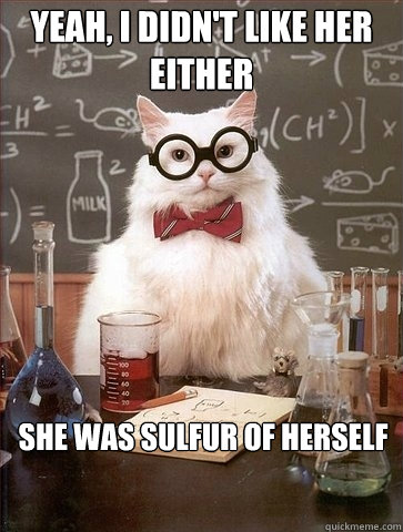 yeah i didnt like her either she was sulfur of herself - Chemistry Cat