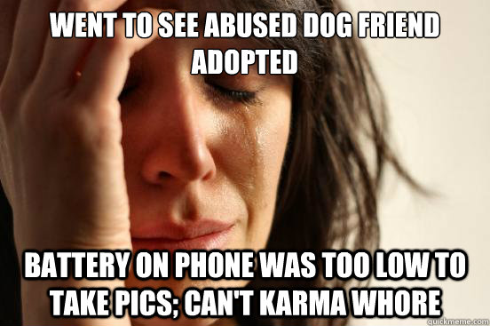 went to see abused dog friend adopted battery on phone was t - First World Problems