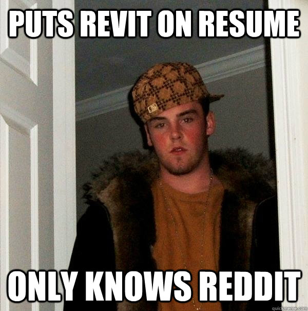 puts revit on resume only knows reddit - Scumbag Steve