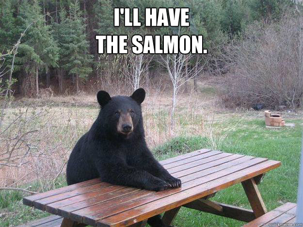 ill have the salmon  - Bear of Bad News