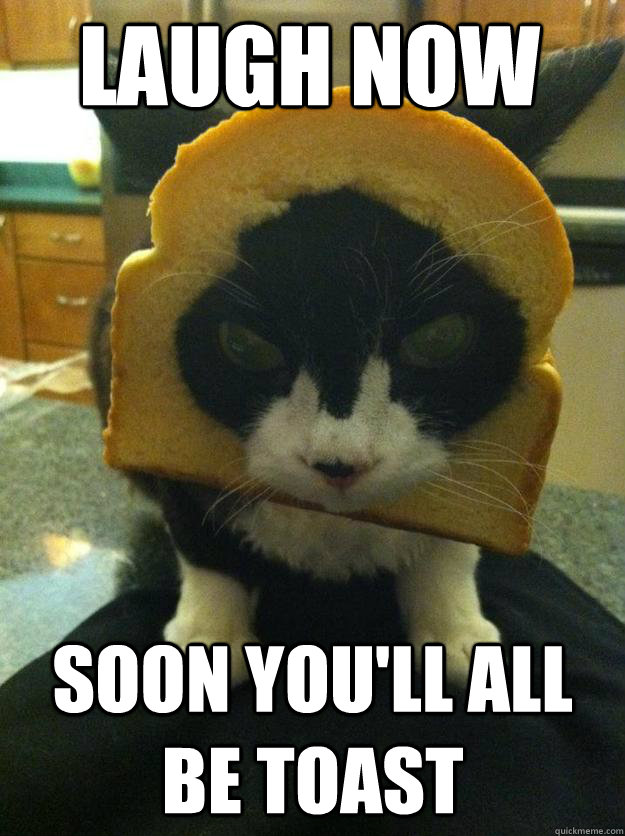 laugh now soon youll all be toast - Angry Breaded Cat