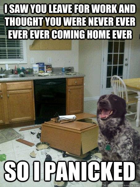 i saw you leave for work and thought you were never ever eve - panicked dog