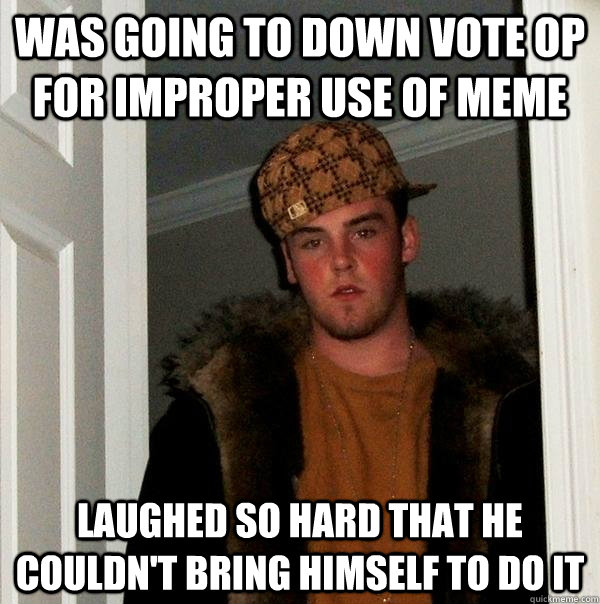 was going to down vote op for improper use of meme laughed s - Scumbag Steve