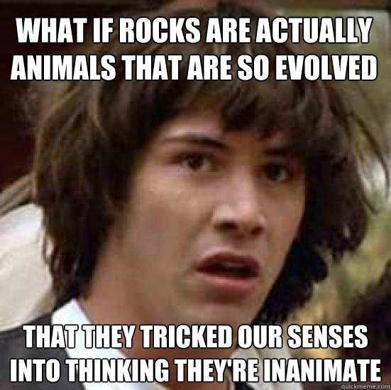 what if rocks are actually animals that are so evolved that  - conspiracy keanu