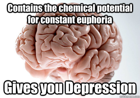 contains the chemical potential for constant euphoria gives  - Scumbag Brain