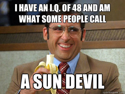 i have an iq of 48 and am what some people call a sun devi - Brick Tamland