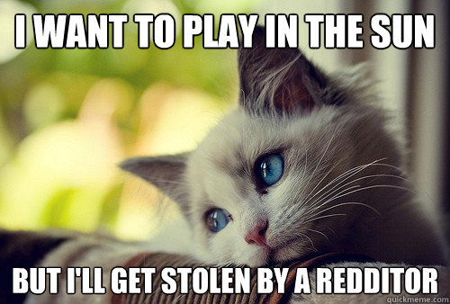 i want to play in the sun but ill get stolen by a redditor - First World Problems Cat