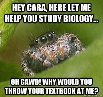 hey cara here let me help you study biology oh gawd why - Misunderstood Spider