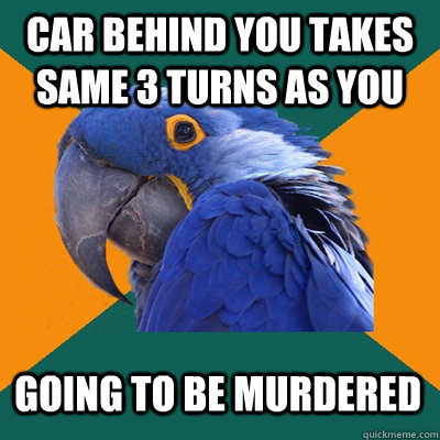 car behind you takes same 3 turns as you going to be murdere - Paranoid Parrot