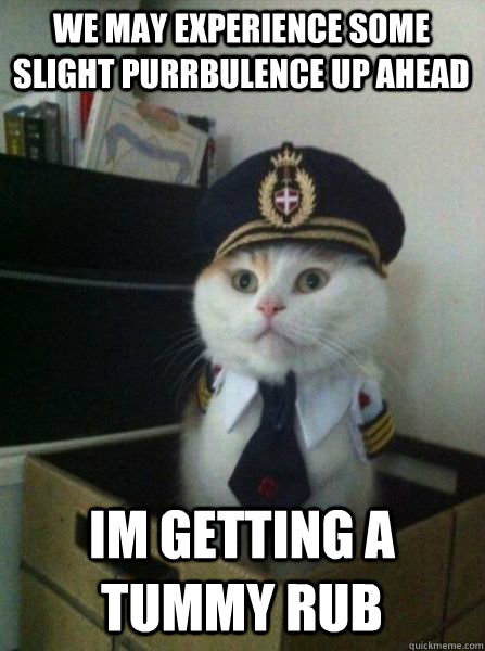 we may experience some slight purrbulence up ahead im gettin - Captain kitteh