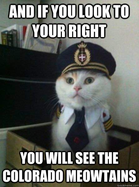 and if you look to your right you will see the colorado meow - Captain kitteh