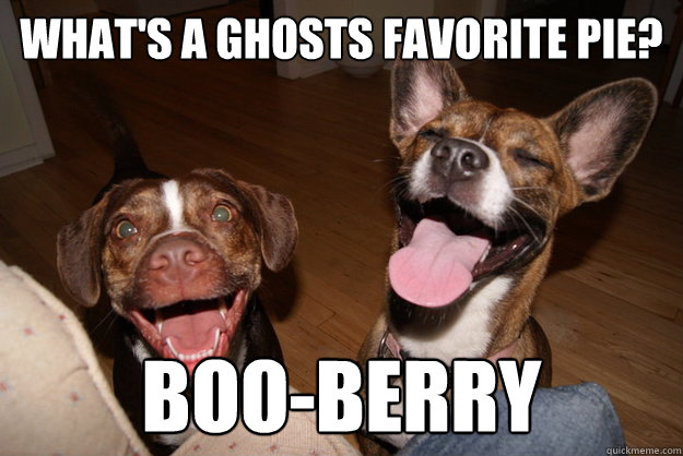 whats a ghosts favorite pie booberry - Clean Joke Puppies