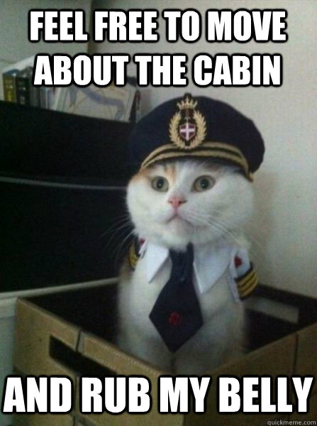 feel free to move about the cabin and rub my belly - Captain kitteh