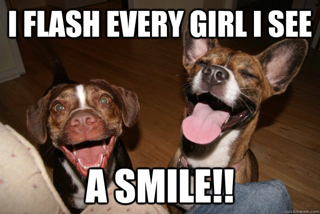 i flash every girl i see a smile - Clean Joke Puppies