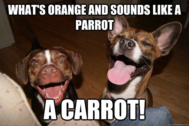 whats orange and sounds like a parrot a carrot - Clean Joke Puppies
