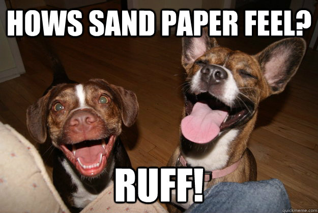 hows sand paper feel ruff - Clean Joke Puppies