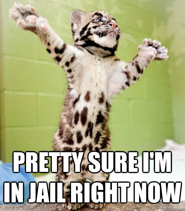 pretty sure im in jail right now - PastorCat