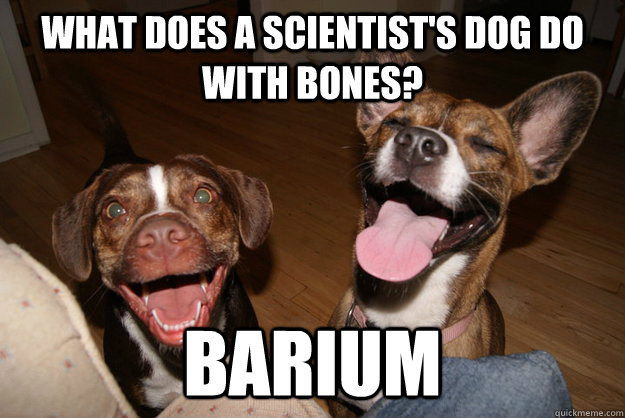 what does a scientists dog do with bones barium - Clean Joke Puppies