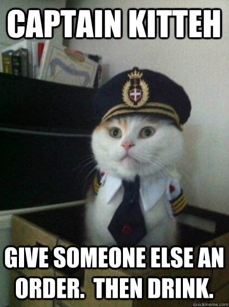 captain kitteh give someone else an order then drink - Captain kitteh