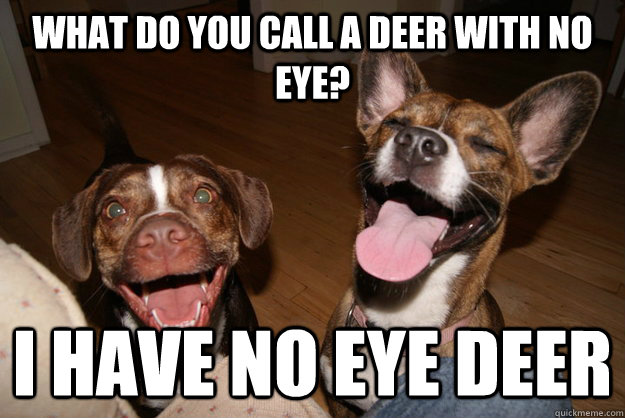 what do you call a deer with no eye i have no eye deer - Clean Joke Puppies
