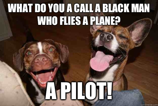 What do you a call a black man who flies a plane A pilot - Clean Joke Puppies