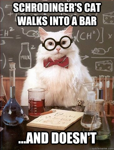 schrodingers cat walks into a bar and doesnt - Chemistry Cat