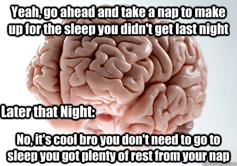 yeah go ahead and take a nap to make up for the sleep you d - Scumbag Brain