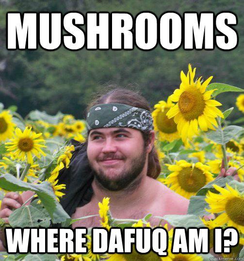 Funny Hippie Meme : Mushrooms where dafuq am i confused hippie quickmeme