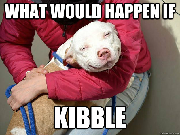 what would happen if kibble - 10 dog