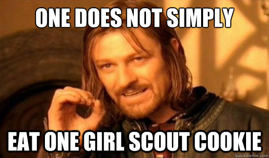 one does not simply eat one girl scout cookie - Boromir