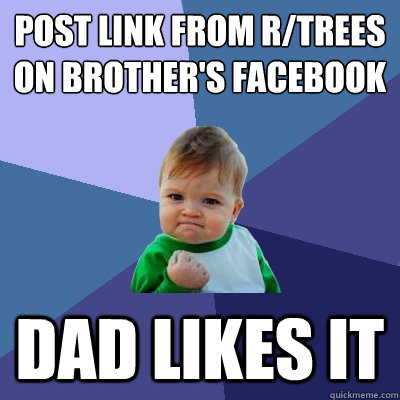 post link from rtrees on brothers facebook dad likes it - Success Kid