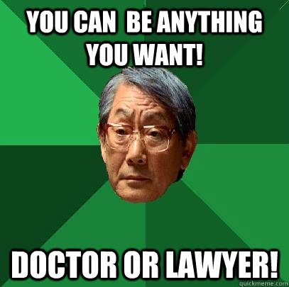 you can be anything you want doctor or lawyer - High Expectations Asian Father