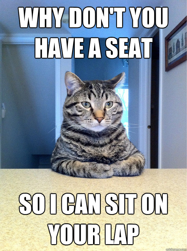 why dont you have a seat so i can sit on your lap - Chris Hansen Cat
