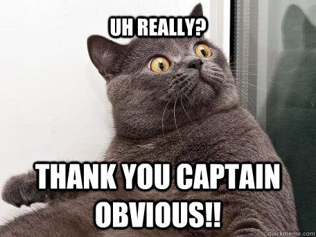 thank you captain obvious meme MEMEs