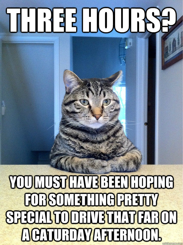 three hours you must have been hoping for something pretty  - Chris Hansen Cat