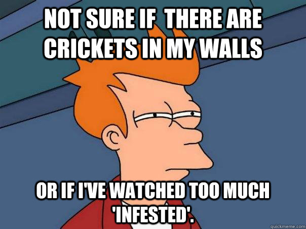 not sure if there are crickets in my walls or if ive watch - Futurama Fry