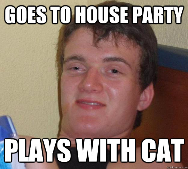 goes to house party plays with cat - 10 Guy
