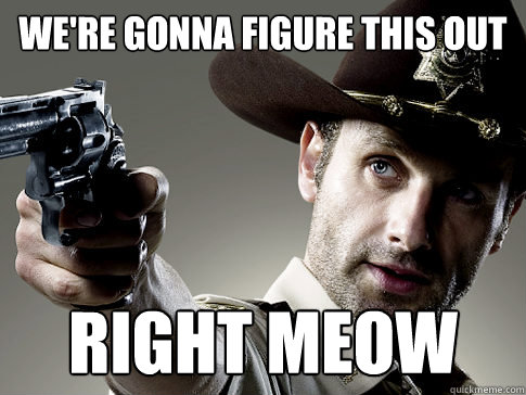were gonna figure this out right meow - Rick Grimes on TV