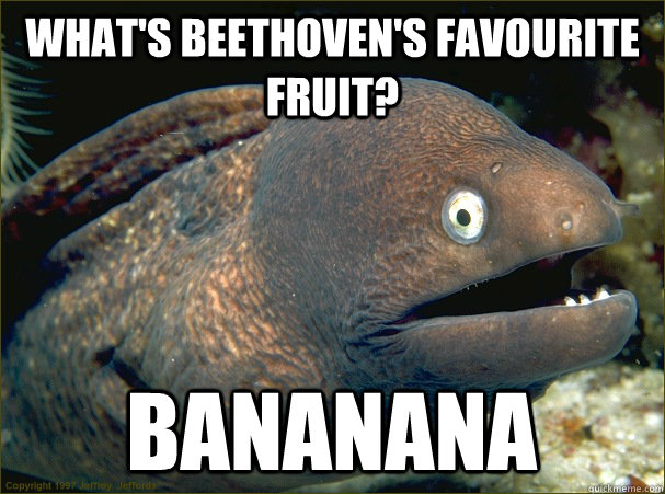 whats beethovens favourite fruit bananana - Bad Joke Eel