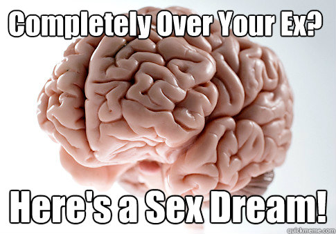 completely over your ex heres a sex dream  - Scumbag Brain