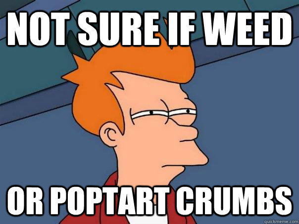 not sure if weed or poptart crumbs - Futurama Fry