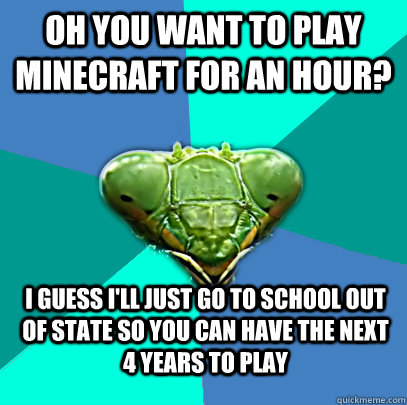 oh you want to play minecraft for an hour i guess ill just - Crazy Girlfriend Praying Mantis