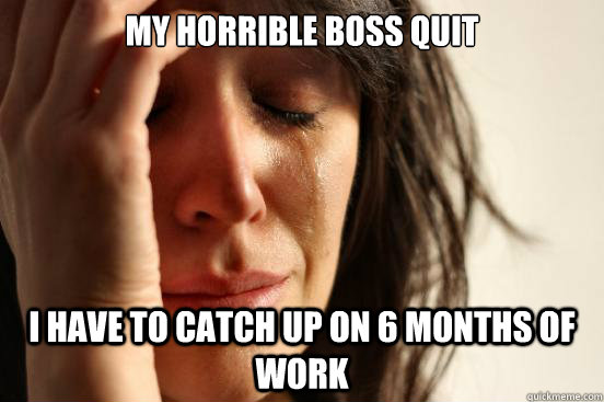 my horrible boss quit i have to catch up on 6 months of work - First World Problems
