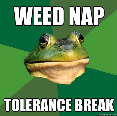 weed nap tolerance break - Foul Bachelor Frog