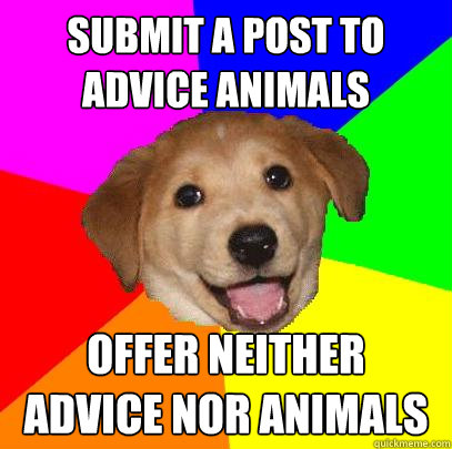 submit a post to advice animals offer neither advice nor ani - Advice Dog