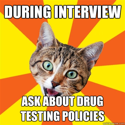 during interview ask about drug testing policies - Bad Advice Cat